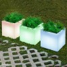 Narciso Solar Smarttech, New Garden