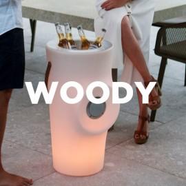 Botellero iluminado con altavoz Woody